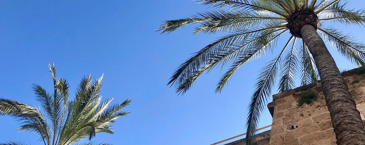 Noble Villa auf Mallorca mieten
